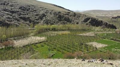 Akakhail Village د اکاخیلو کلی