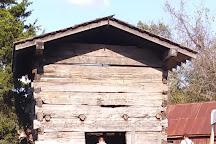 Ames Plantation, Grand Junction, United States