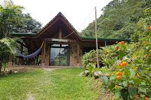 Cloudbridge Nature Reserve, Chirripo National Park, Costa Rica