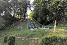 Hochseilpark Dresden-Buehlau, Dresden, Germany