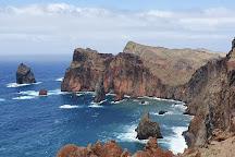 Safari Madeira Island, Funchal, Portugal