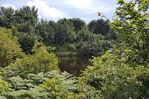 Wigg Island Community Park, Runcorn, United Kingdom