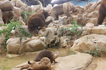 Rosenbruch Wildlife Museum, St. George, United States
