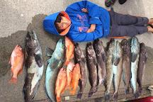 Brookings Fishing Charters, Brookings, United States