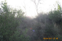 Takhni-Rehmapur Wildlife Sanctuary, Hoshiarpur, India
