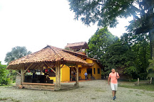 Canopy Los Caracolies, Montenegro, Colombia