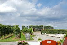 Wijngaard Saalhof, Wognum, The Netherlands