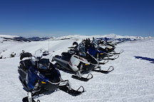 White Mountain Snowmobile Tours, Leadville, United States