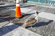 Pompano Municipal Pier, Pompano Beach, United States