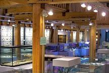 Newfoundland Insectarium, Deer Lake, Canada