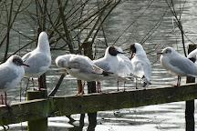 Chorlton Water Park, Manchester, United Kingdom