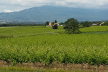 Auberge du Vin, Mazan, France
