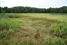 Touisset Marsh Wildlife Refuge, Warren, United States