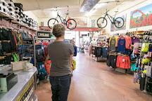 Chile Pepper Bike Shop, Moab, United States