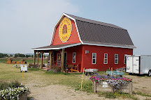 The Jungle Farm, Red Deer, Canada
