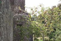 Barryscourt Castle, County Cork, Ireland