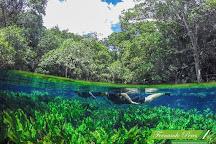 Aquario Natural, Bonito, Brazil