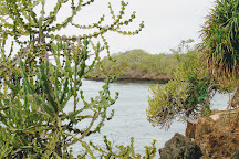 Pilli Pipa Dhow Safari, Diani Beach, Kenya