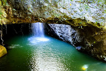 Springbrook National Park, Springbrook, Australia