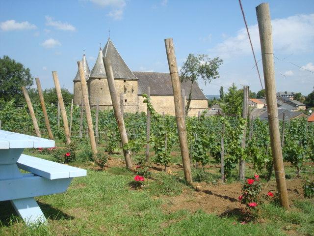 les vignerons de Servion
