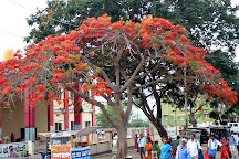 Melkote Kalyani, Mysuru (Mysore), India