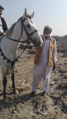 Chaman Abbas chiniot