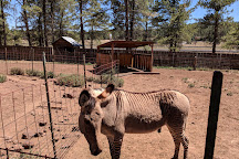 Grand Canyon Deer Farm, Williams, United States