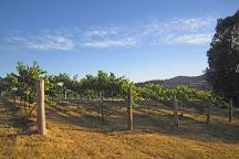 Flyfaire Wines, Woomargama, Australia