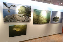 Hannu Hautala Nature Photography Centre, Kuusamo, Finland