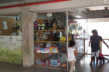Aquario da Bacia do Rio Sao Francisco, Belo Horizonte, Brazil