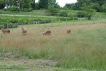 Tierpark Wismar, Wismar, Germany