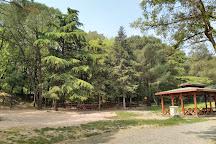 Degirmenbogazi Tabiat Parki, Balikesir, Turkey