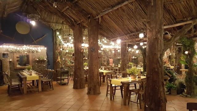 Forest Vietnamese
