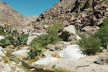 Anza-Borrego Desert State Park, Borrego Springs, United States