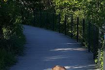 Parc Departemental des Cormailles, Ivry-sur-Seine, France