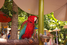 Parrot Mountain & Gardens, Pigeon Forge, United States