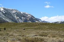 Mammoth Rocks, Bodega Bay, United States
