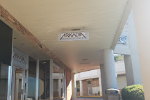 Arkadia Retrocade, Fayetteville, United States