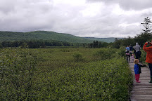Cranberry Glades Botanical Area, Pocahontas County, United States