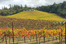 Adventures in Cycling, Healdsburg, United States
