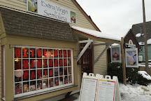 Extra Virgin Oil Store, Mystic, United States