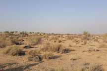 Wanderlust Camel Safari, Jaisalmer, India