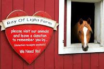 Ray of Light Farm, East Haddam, United States
