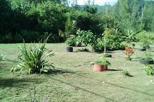 Motu Tresor, Huahine, French Polynesia