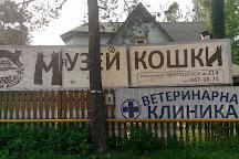 The Cat Museum, Vsevolozhsk, Russia