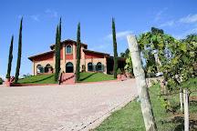Vinhos Micheletto - Sitio Santa Rita, Louveira, Brazil