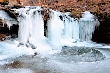 Frozen Head State Park, Wartburg, United States