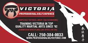 Professional Self Defence