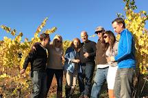 Summit Wine & Adventure Tours, Newberg, United States