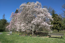 Marquand Park, Princeton, United States